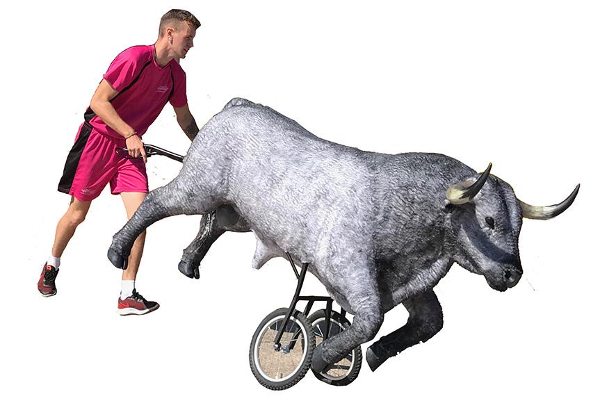 Carretones de toros a escala real y de cuerpo entero